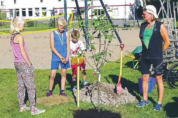 Tre fjärdedelar av elevrådet planterar Barnens träd tillsammans med Jonas Paulman.