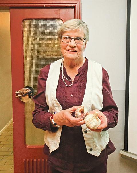 Barbro Johansson visar vitlökssorten Gusum som härstammar från hennes barndomshem i Asplund.