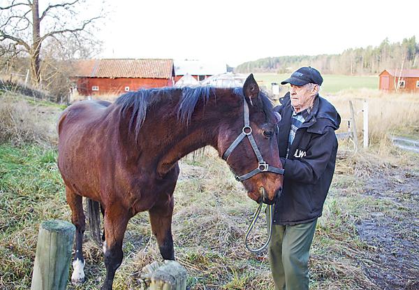Den tidigare kaptenen vid Livgrenadjärregementet I 4 i Linköping, Ingemar Nathanaelson, kommer väl överens med Mr Rex.