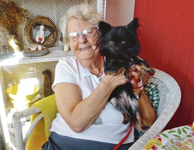 En liten chihuahuavalp hos grannen till en av döttrana blev Barbro Thoors nya kompis.