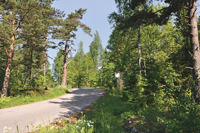 Backkrönet med busshållplatsen Spöktallen, mellan Pukeberg och Sibbenhorva.