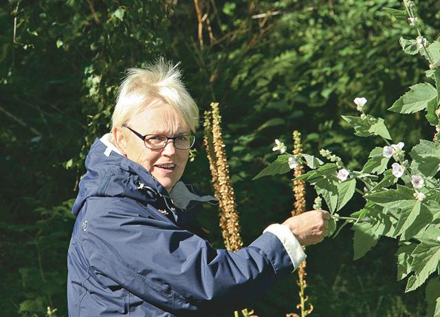 Lisbeth Antonsson är gärna i Fridhems vackra trädgård.