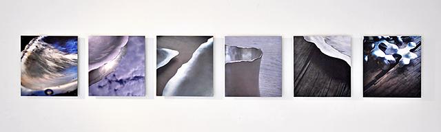 På väggen hänger en rad med sex foton av detaljer från alstren
