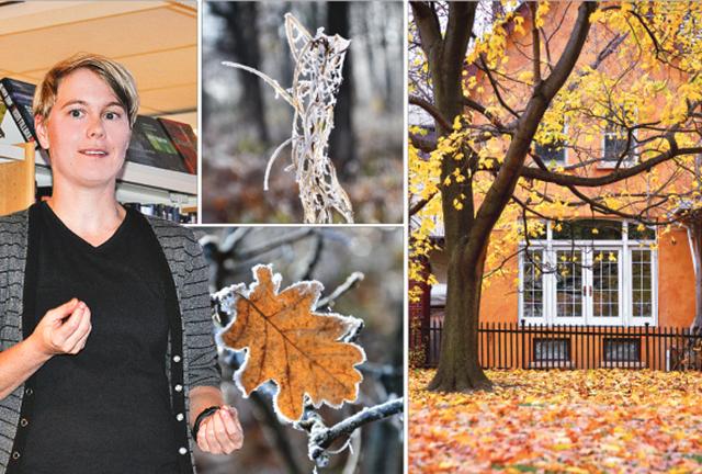 Trädgårdsmästaren Joppe Svensson från Naturcentrum i Linköping höll ett inspirerande och kunnigt föredrag om trädgården om hösten.