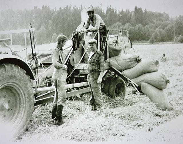 Tröskning pågår. Arbete på Hättorps gård.