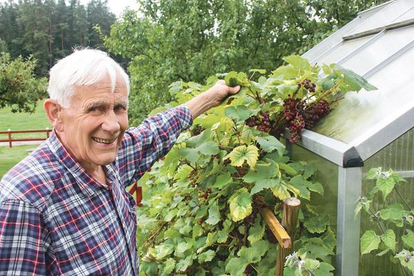 Ingolf Preuschof visar sina vindruvor.