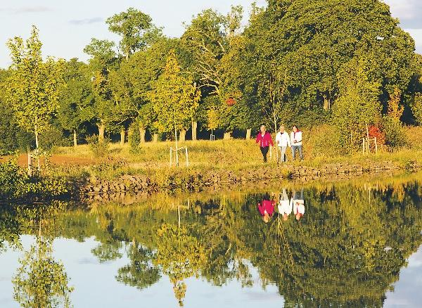 Träden utmed Göta kanal bildar tillsammans Sveriges längsta trädallé. Genom att bli trädfadder kan den som vill bidra till återplanteringen av nya träd. Flera svenska kungligheter har ett träd planterat utefter kanalen.