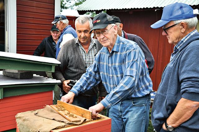 Omgiven av andra medlemmar kikar Staffan Hultgren i en kupa.