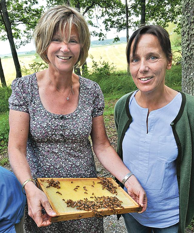 Johanna Lindwall-Jeppås från Rönötrakten och Caroline Petnini från Tväggestad är två nya biodlare som idag har fem respektive sex kupor.