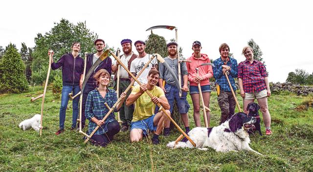 Hela slåttergänget samlade med var sin lie. Det vill säga Fredrik Björkegren (i gul tröja) och hans kompisar.