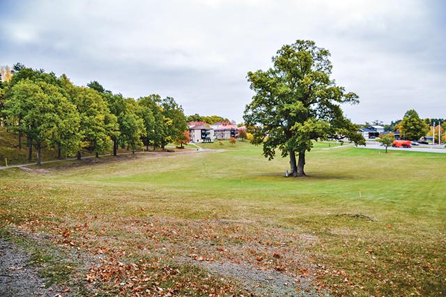 Vibjörnsparken är Finspångs egen gröna oas.